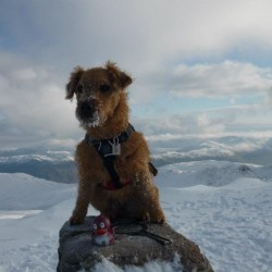 Jess on the trig point